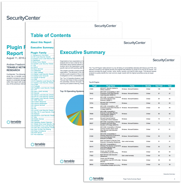 Plugin Family Summary Report
